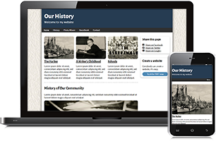 History website example
